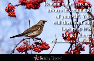 Calm Down quote #2
