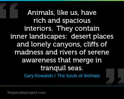 Canyons quote #2