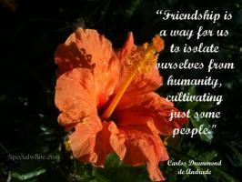 Carlos Drummond de Andrade's quote