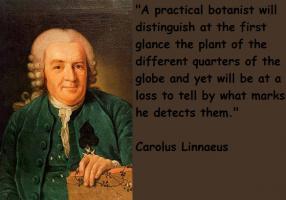 Carolus Linnaeus's quote #1