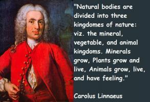 Carolus Linnaeus's quote