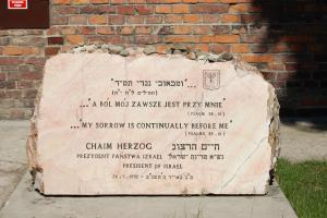 Chaim Herzog's quote #1