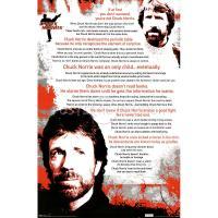 Chuck Norris's quote