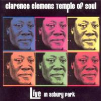 Clarence Clemons's quote