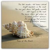 Coastal quote #1