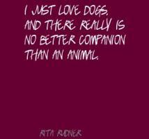 Companion quote #4