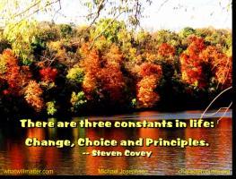 Constants quote #2