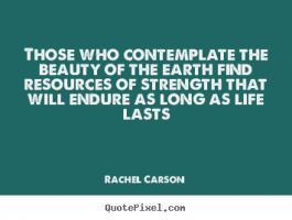 Contemplate quote #2