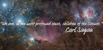 Cosmos quote #1