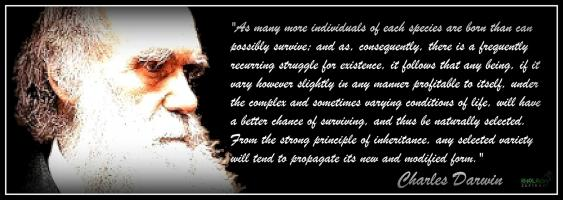 Darwinian quote