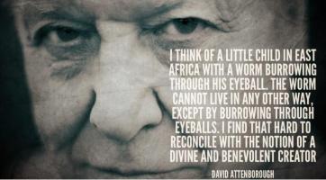 David Attenborough's quote