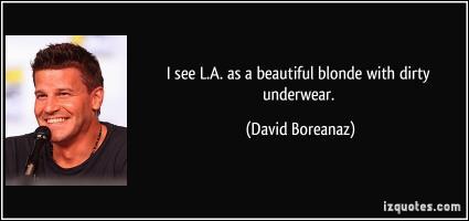 David Boreanaz's quote
