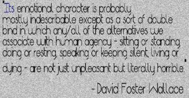 David Foster Wallace's quote