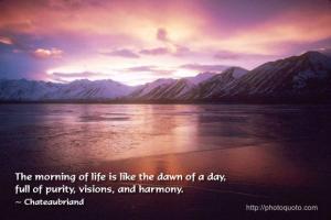Dawn quote #6