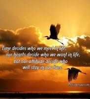 Decides quote #2