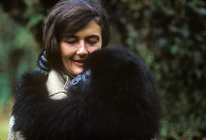 Dian Fossey's quote #6
