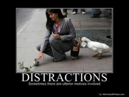Distractions quote #2