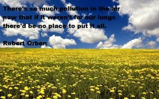 Earth Day quote #2