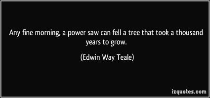 Edwin Way Teale's quote #3