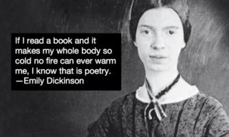 Emily Dickinson's quote