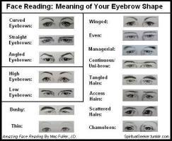 Eyebrow quote #1