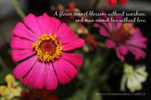 Flowery quote #1