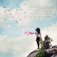 Flown quote #1