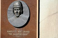 Harold Grange's quote #1