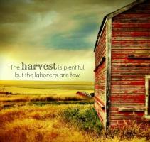 Harvest quote #2