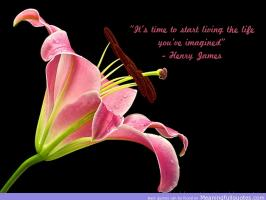 Henry James quote #2