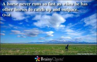 Horseback quote #1