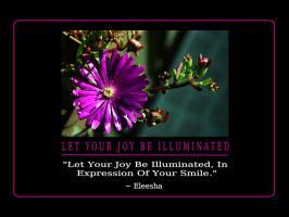 Illuminated quote
