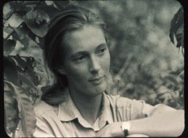 Jane Goodall profile photo