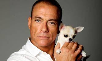 Jean-Claude Van Damme profile photo
