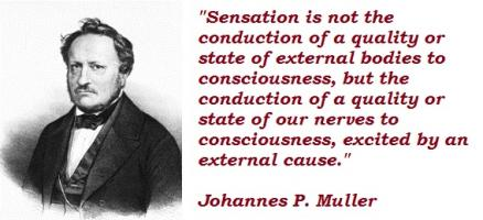 Johannes P. Muller's quote #5