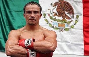 Juan Manuel Marquez profile photo