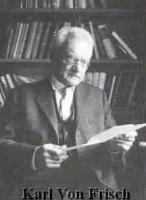 Karl von Frisch's quote #2