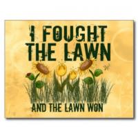 Lawn quote #1