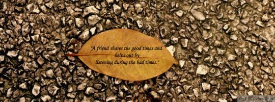 Leaf quote #2