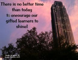 Learner quote #1