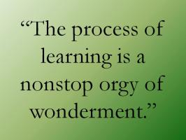 Learning Process quote #2