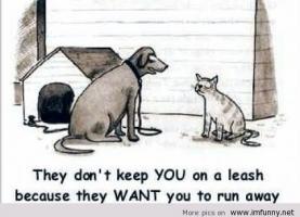 Leash quote #1