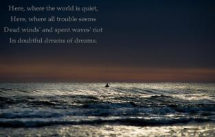 Lone quote #2