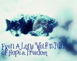 Lone Wolf quote #2