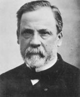 Louis Pasteur's quote