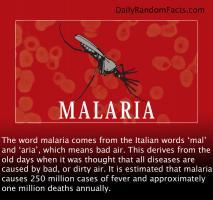 Malaria quote #2