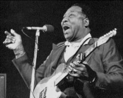 Muddy Waters quote #2