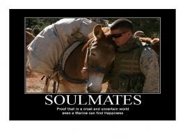 Mules quote #1
