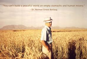 Norman Borlaug's quote