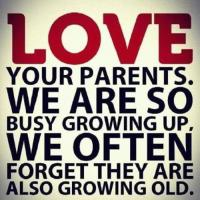 Parental quote #1